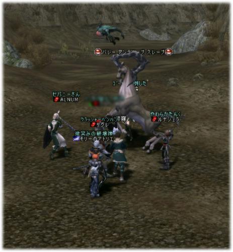 2007012811.jpg