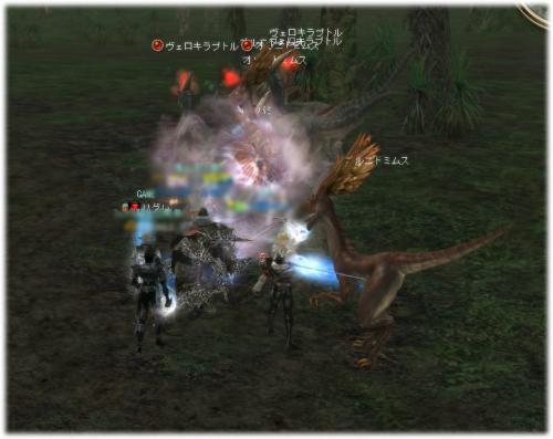 2008062101.jpg