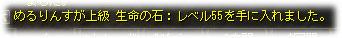 2008080207.jpg