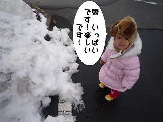 maika2201021.jpg