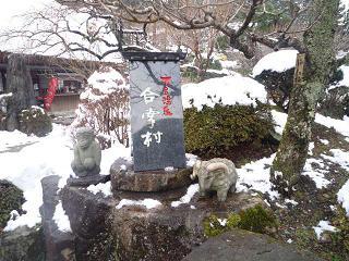maika2201023.jpg