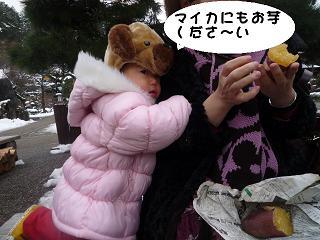 maika2201027.jpg
