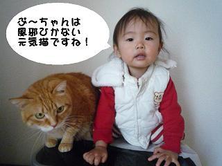 maika2201131.jpg