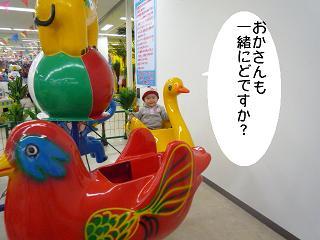 maika22012711.jpg