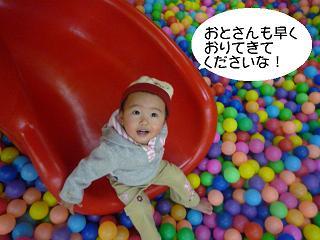 maika2201275.jpg