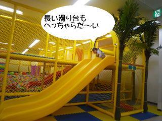 maika2201276.jpg