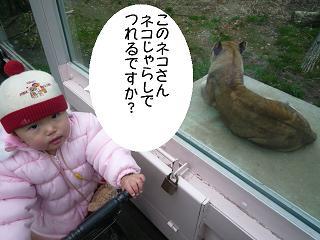 maika22012910.jpg
