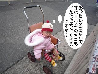 maika2201299.jpg