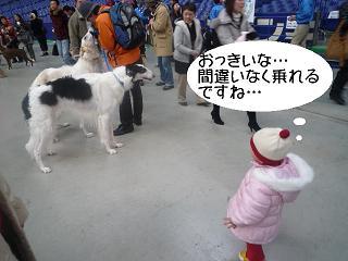 maika2202063.jpg