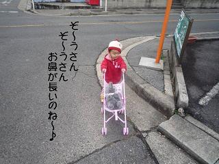 maika2202121.jpg