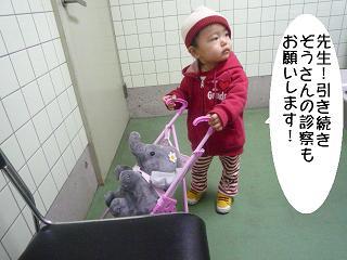 maika2202123.jpg