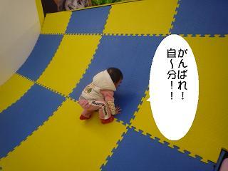maika22021710.jpg