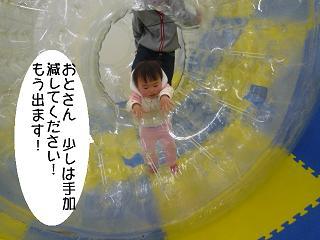 maika22021712.jpg