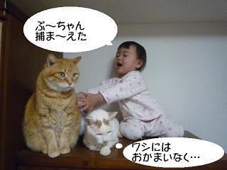 maika2202191.jpg