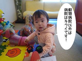 maika2202243.jpg