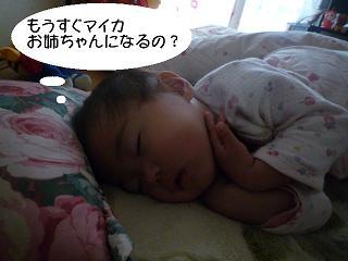 maika2203241.jpg