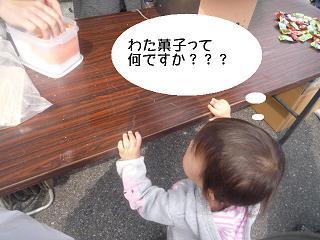 maika2203283.jpg