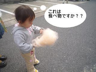 maika2203284.jpg