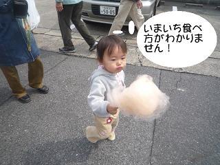 maika2203285.jpg