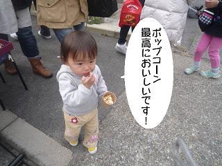 maika2203288.jpg