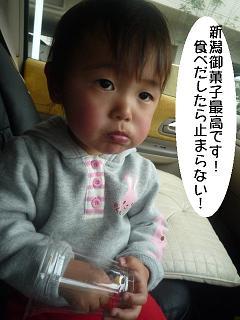 maika2204013.jpg