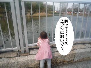 maika22040615.jpg