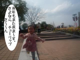 maika22040618.jpg