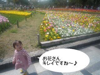 maika2204067.jpg