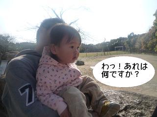 maika22040710.jpg