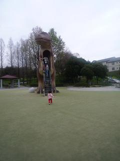 maika2204095.jpg