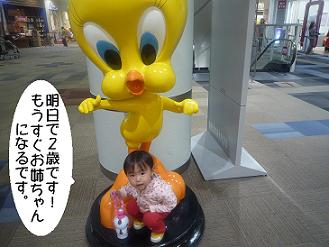 maika2204151.jpg