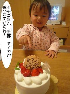 maika2204164.jpg