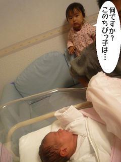 maika2204168.jpg