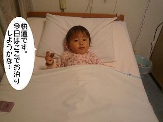 maika2204187.jpg