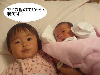 maika2204188.jpg