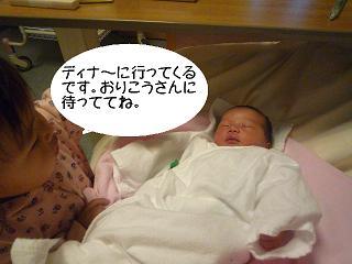 maika2204195.jpg