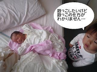 maika2204214.jpg