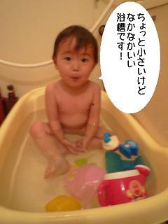 maika2204301.jpg