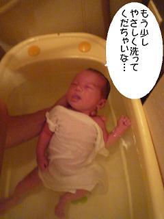 maika2204302.jpg