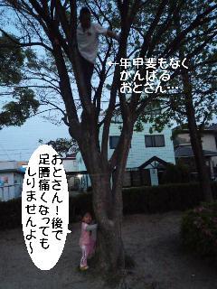 maika2205017.jpg