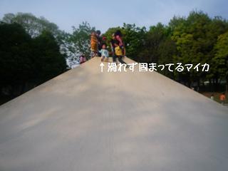 maika2205051.jpg