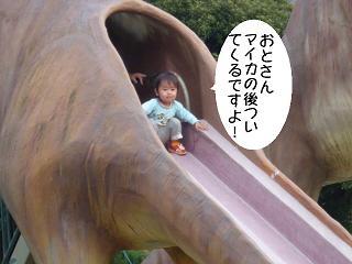 maika22050513.jpg