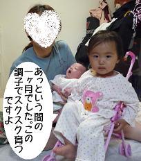 maika2205161.jpg