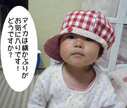 maika2205183.jpg