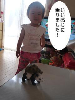 maika2206071.jpg