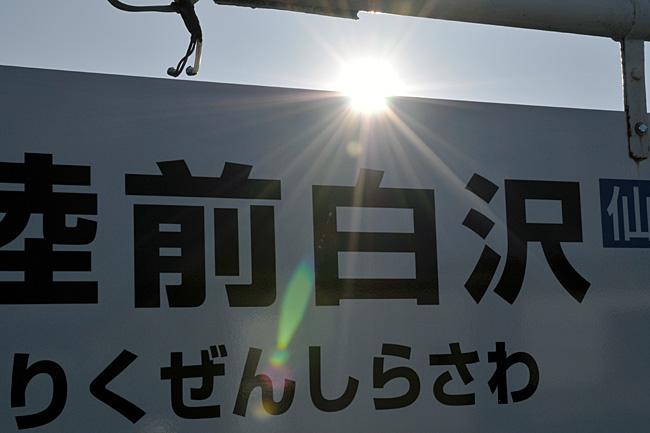 shirasawa10.jpg