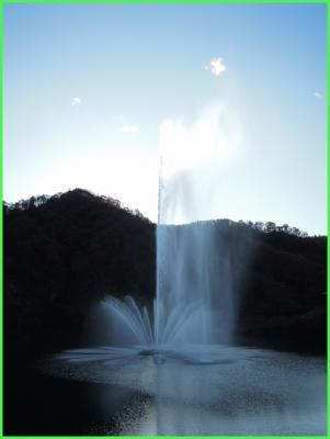 20111211-150050.jpg