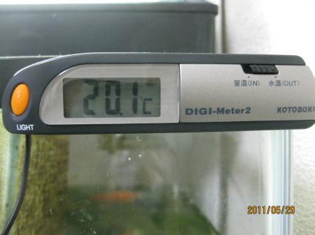 IMG_8197_convert_20110529110215.jpg