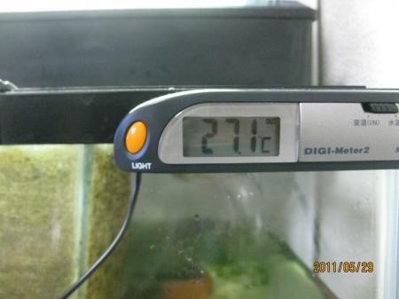 IMG_8200_convert_20110529110312.jpg