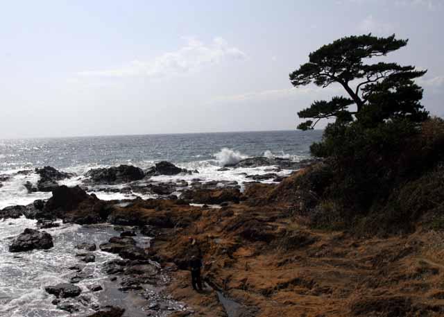 2010koyasunosato29